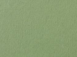 1,4 mm passe-partout con ritaglio individuale 7x10 cm | Salbeigrün (213)