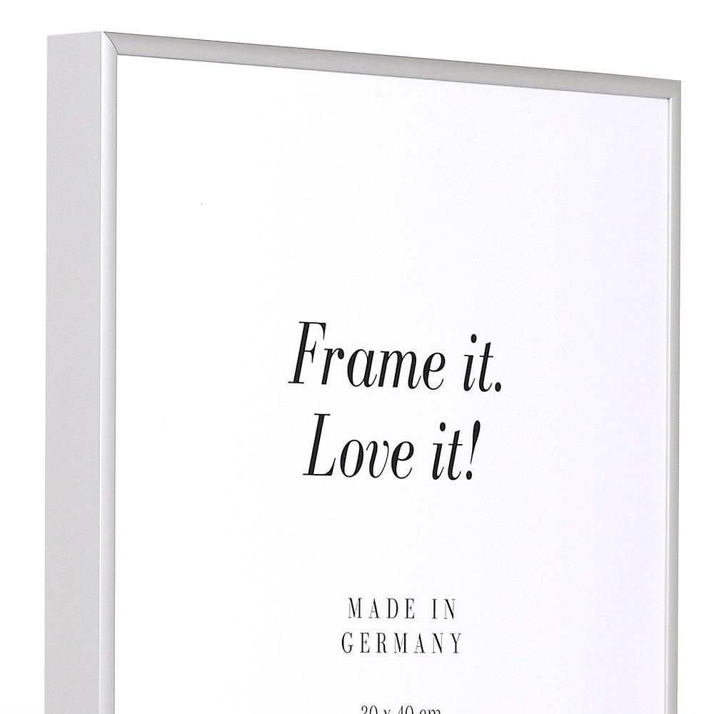 Cornice in alluminio Quadro 60x80 cm | argento opaco | vetro standarde
