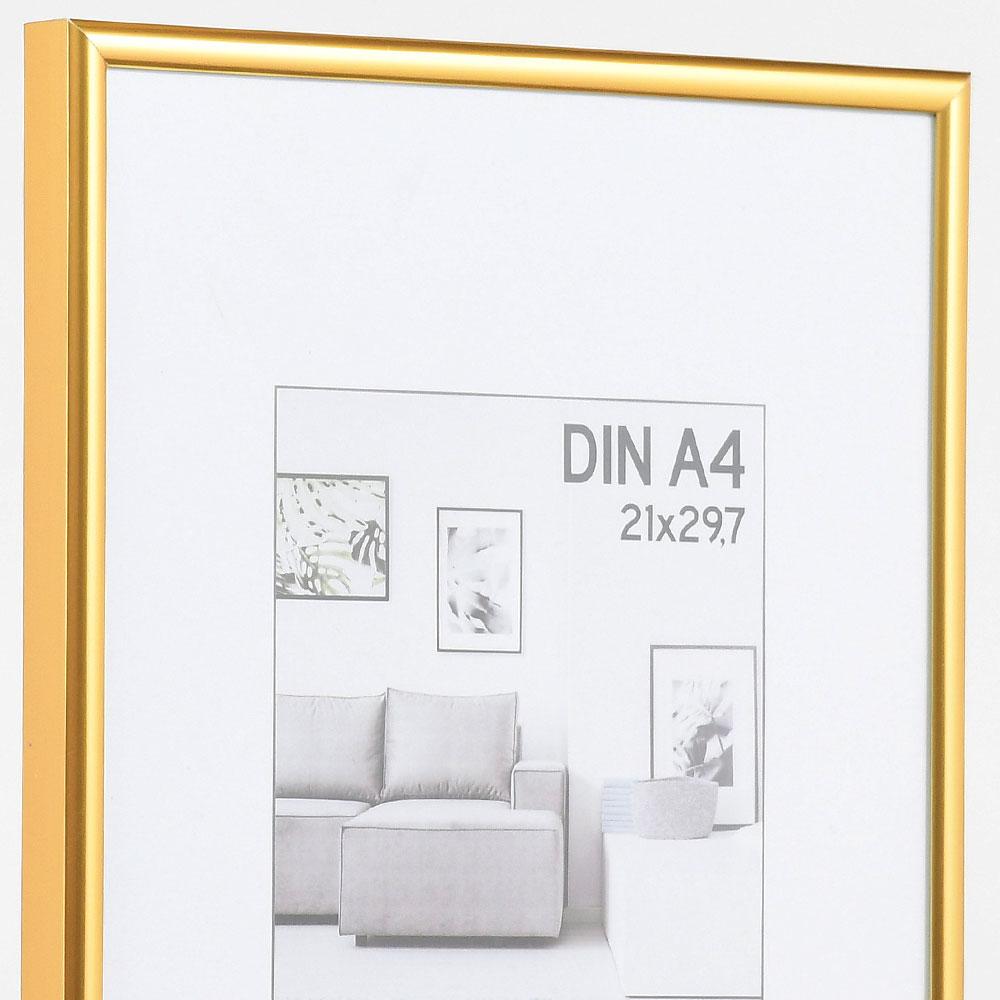 Cornice in plastica Elements 21x29,7 cm (A4)   oro   vetro standarde