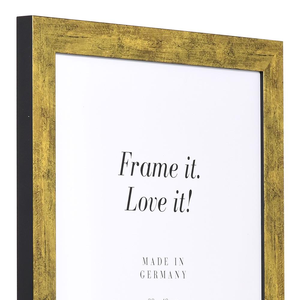 Cornice in fibre di legno Lille 61x91,5 cm | oro antico | vetro standarde