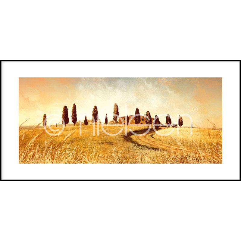 """Immagine incorniciata """"Landscape Italy"""" con cornice in alluminio C2"""
