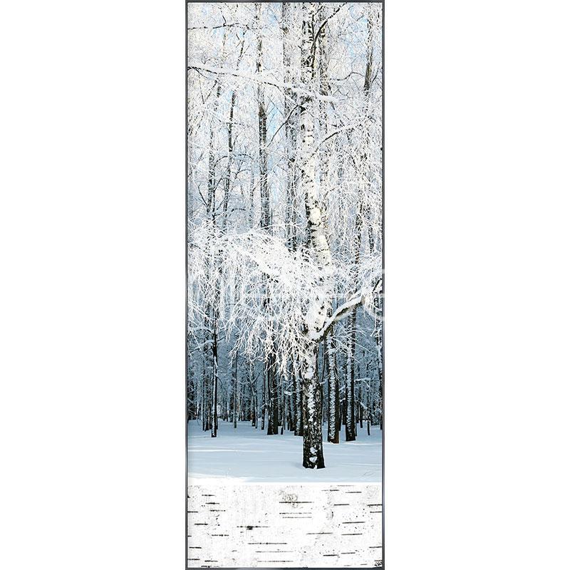 """Immagine incorniciata """"Birch Forest Snow"""" con cornice in alluminio Alpha"""