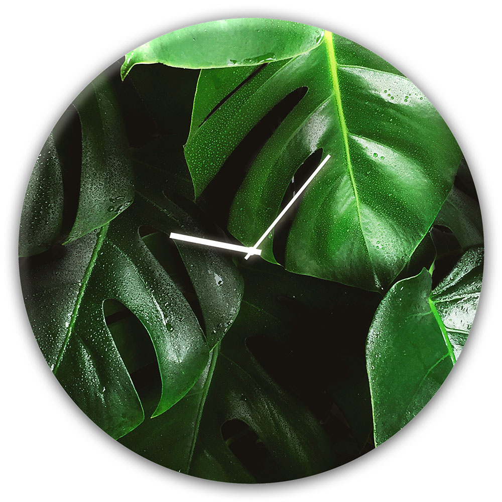 orologio in vetro MONSTERA